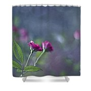Dancers Of Life Shower Curtain