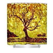 Dances With Stars 2 Shower Curtain
