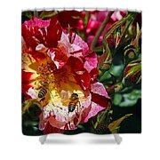 Dancing Bees And Wild Roses Shower Curtain
