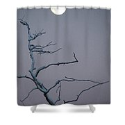 Dancing By The Light Of The Moon Can Shower Curtain