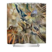 Dancing Dreams Shower Curtain by Joe Misrasi