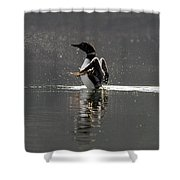 Dancing Loon Shower Curtain