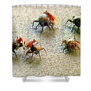 Dancing Of The Fiddlers Shower Curtain