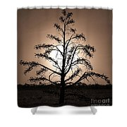 Dancing On A Moonlight Shower Curtain