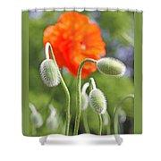 Dancing Orange Poppy Flower Pods Shower Curtain