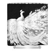 Dancing Peacock Black Shower Curtain