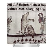 Dancing Pig, 14th Century Shower Curtain