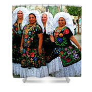 Dancing Queens Palm Springs Shower Curtain