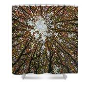 Dancing Through Sunday Shower Curtain