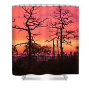 Dancing Trees Into The Fire Shower Curtain