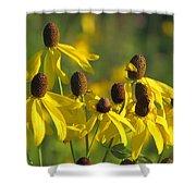 Dancing Wildflowers Shower Curtain