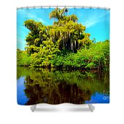 Dancing Willow Shower Curtain