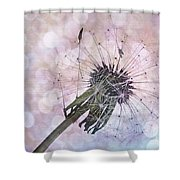Dandelion Before Pretty Bokeh Shower Curtain