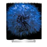 Dandelion Blues Shower Curtain