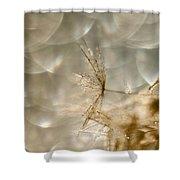 Dandelion Heaven Shower Curtain