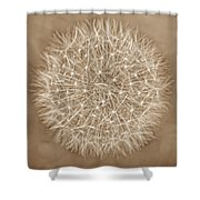 Dandelion Marco Abstract Brown Shower Curtain