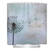 Dandelion Print Shower Curtain