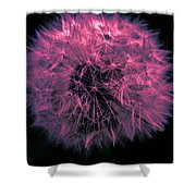Dandelion Red Shower Curtain