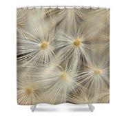 Dandelion Seed Head Macro Iv Shower Curtain