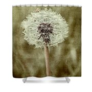 Dandelion Textures Shower Curtain