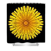 Dandelion V Flower Mandala White Shower Curtain