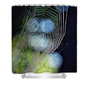 Dangerous Beauty Shower Curtain