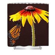 Dangling Monarch Shower Curtain