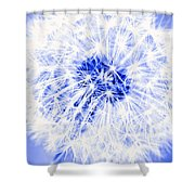 Dandy Blue Shower Curtain