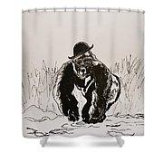 Dapper Shower Curtain by Beverley Harper Tinsley