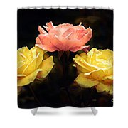 Dare To Be Different Shower Curtain