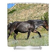 Dark And Wild Horse Shower Curtain by Sabrina L Ryan