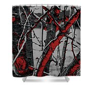 Dark Branches Shower Curtain