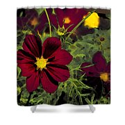 Dark Coreopsis' Shower Curtain