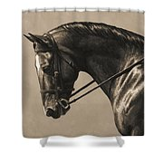 Dark Dressage Horse Aged Photo Fx Shower Curtain