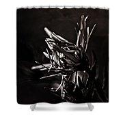 Dark Flower Shower Curtain