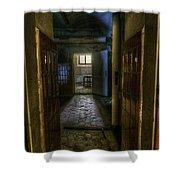 Dark Kitchen Shower Curtain