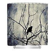 Crow In Dark Lights Shower Curtain
