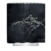 Dark Poetry Shower Curtain