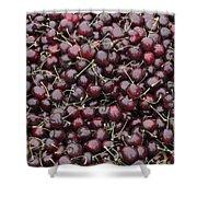 Dark Red Cherries For Sale Shower Curtain
