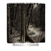 Dark Winding Path Shower Curtain