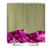 Darling Dianthus Shower Curtain