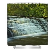 Darnley Cascade Shower Curtain