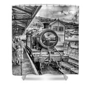 Dart Valley Railway Shower Curtain