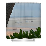 Fannie Bay 1.1 Shower Curtain