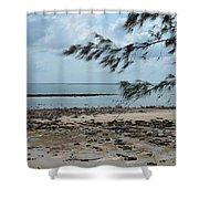 Fannie Bay 1.3 Shower Curtain