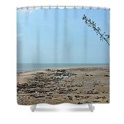 Fannie Bay 1.7 Shower Curtain