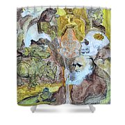 Darwinism					 Shower Curtain