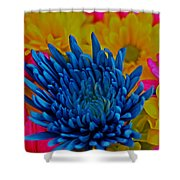 Dash Of Blue Shower Curtain