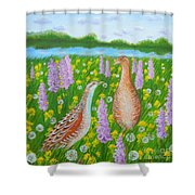 Dating When Orchids Blooming Shower Curtain