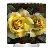 Daughters Of Midas Shower Curtain